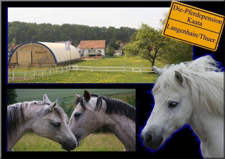 Die Pferdepension & Ponyhof Kaata in Langenhain/Thür.